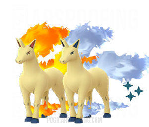 Shiny Rapidash Comparison